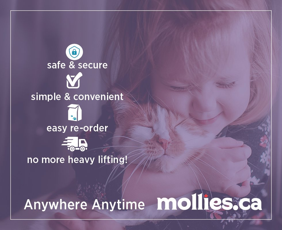 mollies shop online