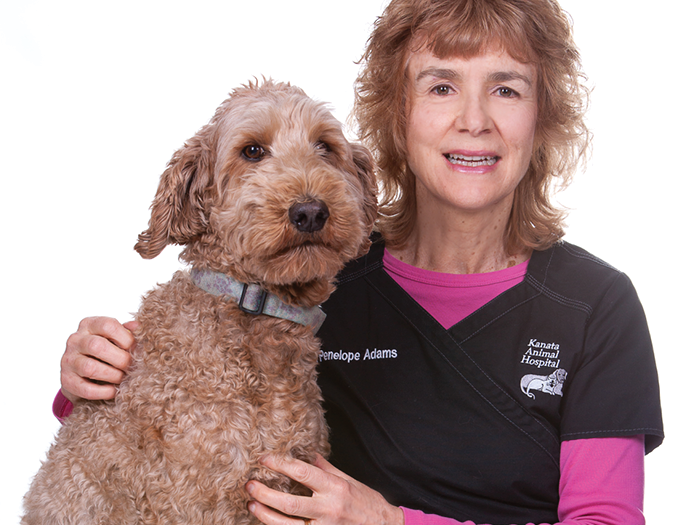 Kanata Animal Hospital Team