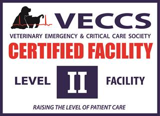 VECCS level 2